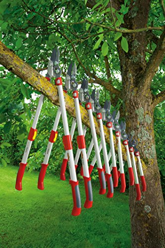 WOLF-Garten Amboss Astschere »Premium Plus«  POWER CUT*** RS 900 T; 73AGA009650 -